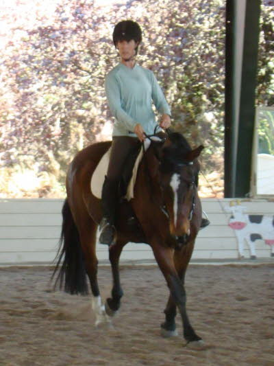 Abby on her mature gelding Penny Wise