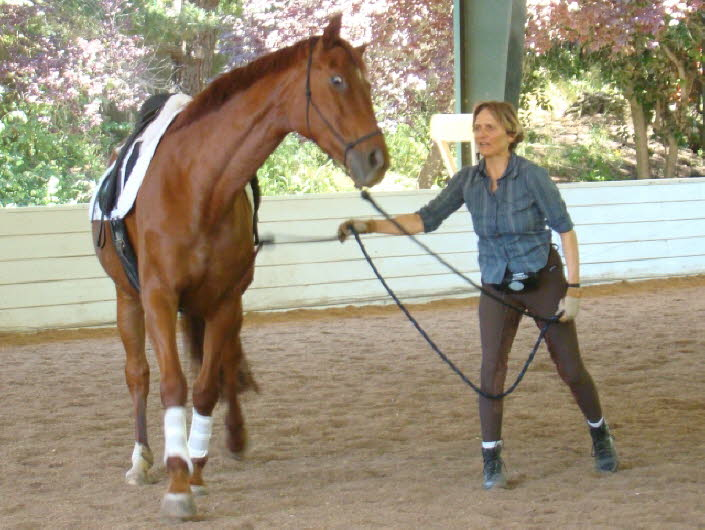 Abby Dawkins first clinic - she sees how her horse responds to Terry