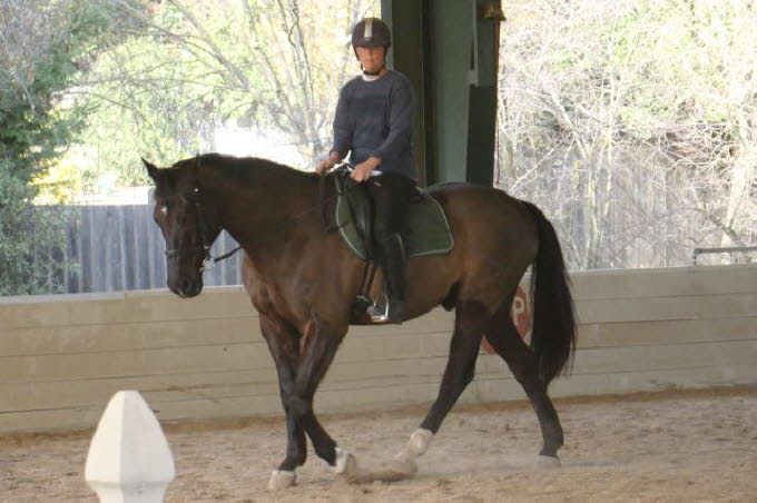 Robin hasn't gotten any less complex, and Elise has a tough first  ride this clinic.