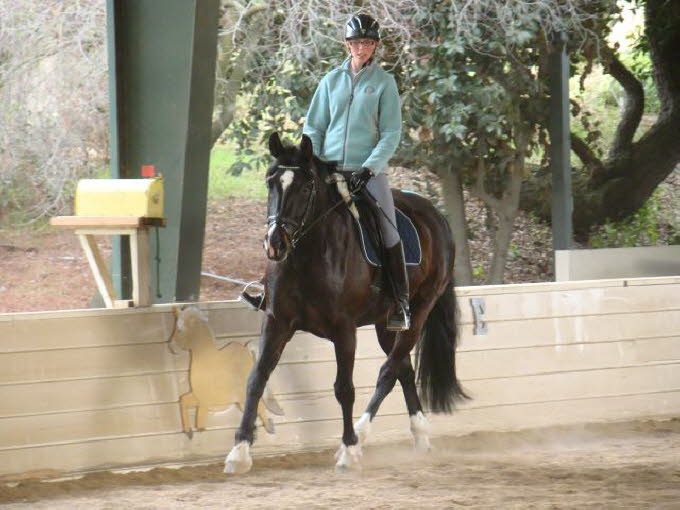 Melissa and Matey showed how a really fit, comfortable horse can progress.