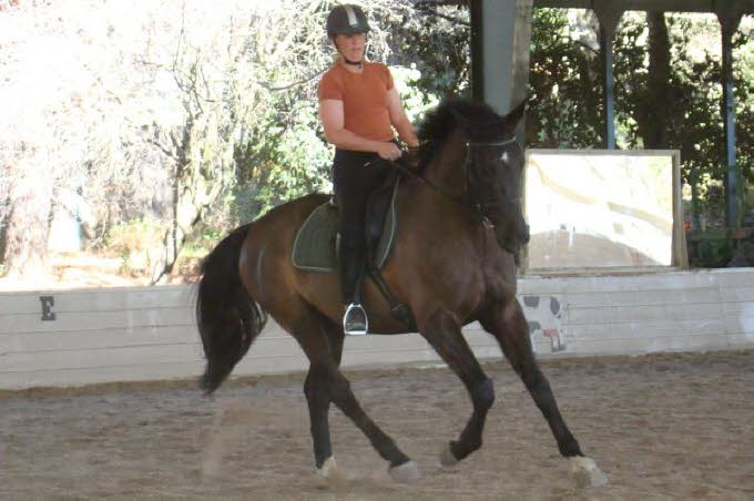 Second ride, second day, good ride, but counter canter proved a bit difficult.
