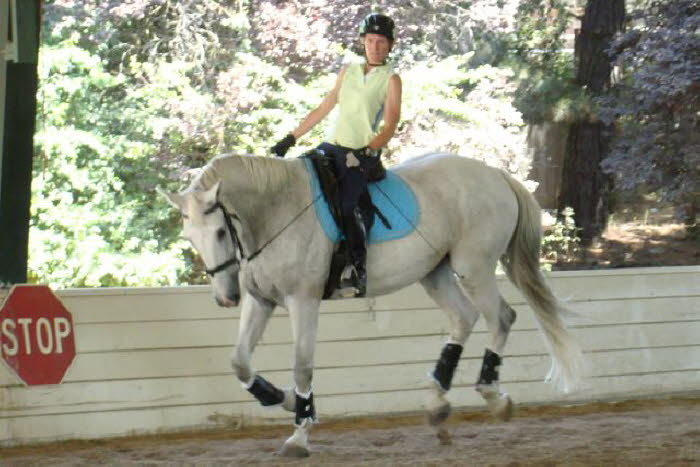 Talk about jump – this mare is huge!