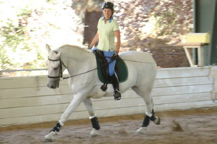 Liz and Ally did lots of canter work – the reach Ally is showing here is impressive