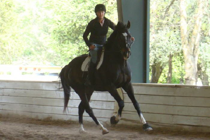 and the canter was so very big