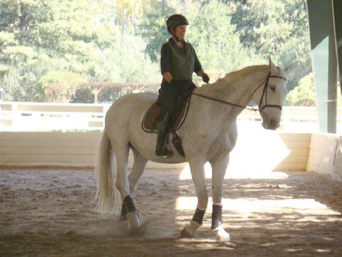 Claire is beginning to look like a dressage horse in this lateral work – so hard for her
