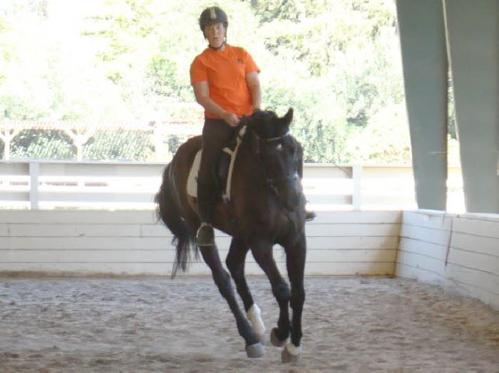 Elise suppling Robin before some intense lead work at the canter.