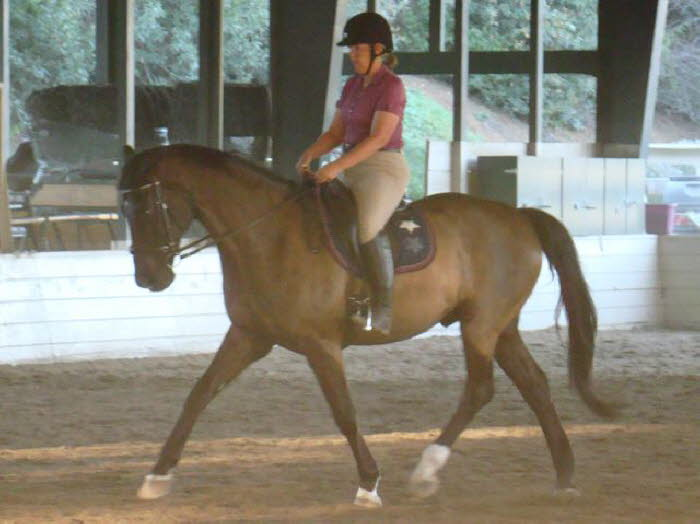 Elise and Robin at a very nice trot