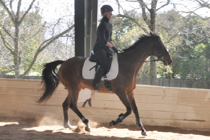The under saddle work reinforced and extended the lesson