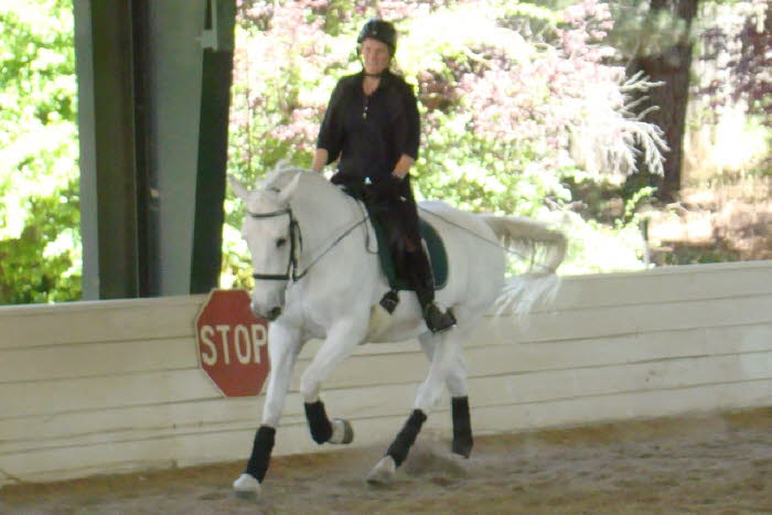 and lots of canter transition work
