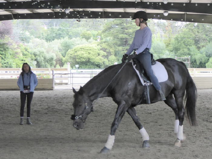 No stirrups yet – but a saddle and good relaxation!